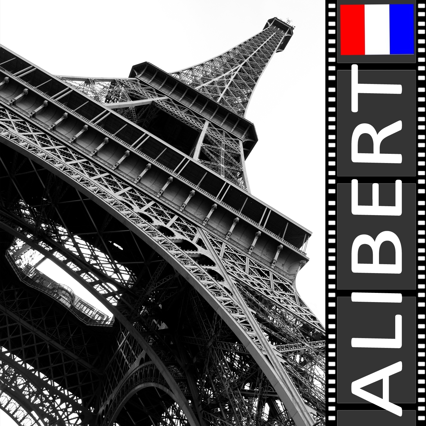 Alibert : La rose rouge
