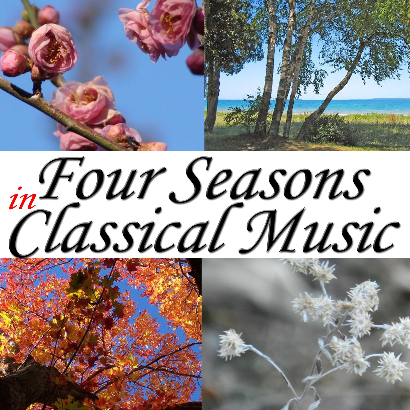 Four Seasons in Classical Music