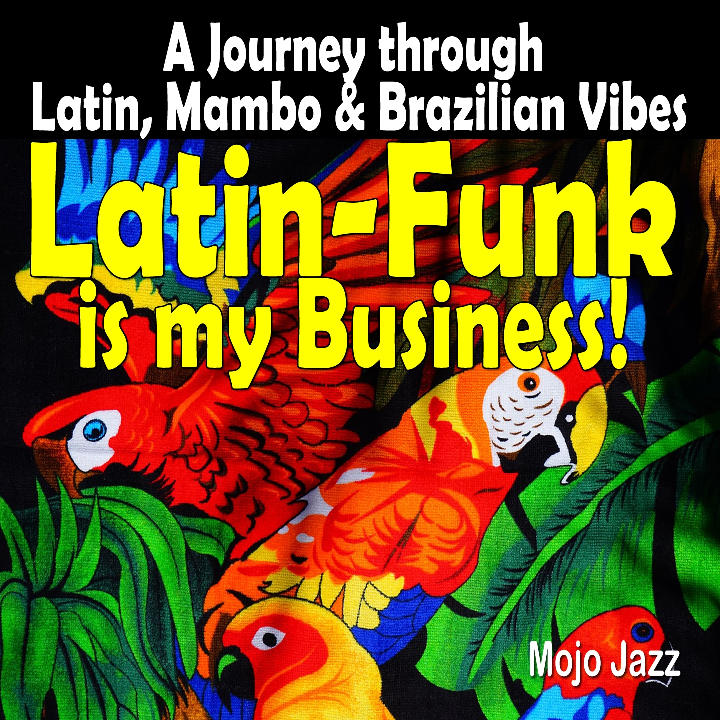 Latin-Funk is my Business!