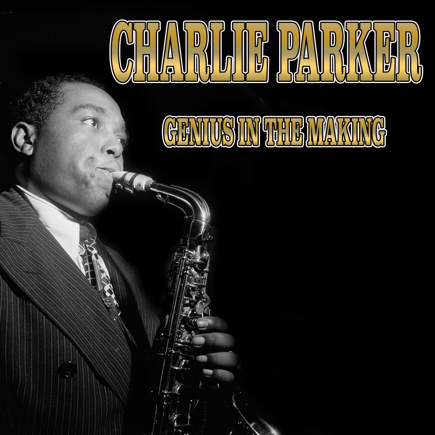 The Best of Charlie Parker's Early Years - Swingmatism, Hootie Blues, Tiny's Tempo, And 21 Other Hits