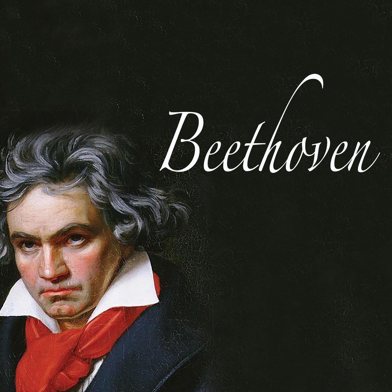 Beethoven : Piano Concertos, Piano Symphonies, Rondos