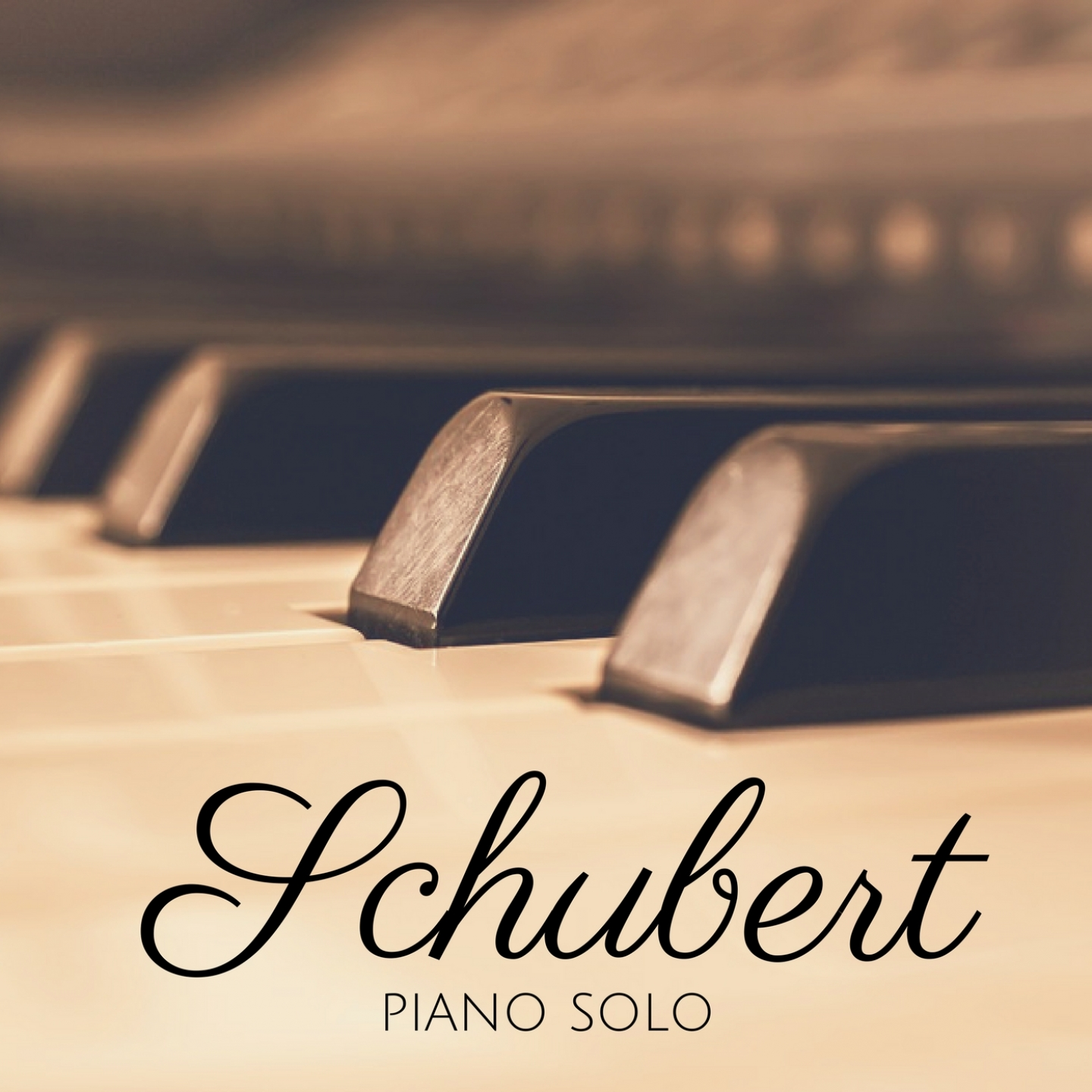 Schubert: Piano Solo