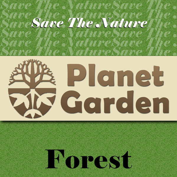 Save the Nature Planet Garden: Forest (Music for the Planet)