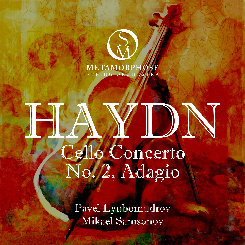 Cello Concerto No. 2 in D Major, Op. 101, Hob. VIIb:2: II. Adagio