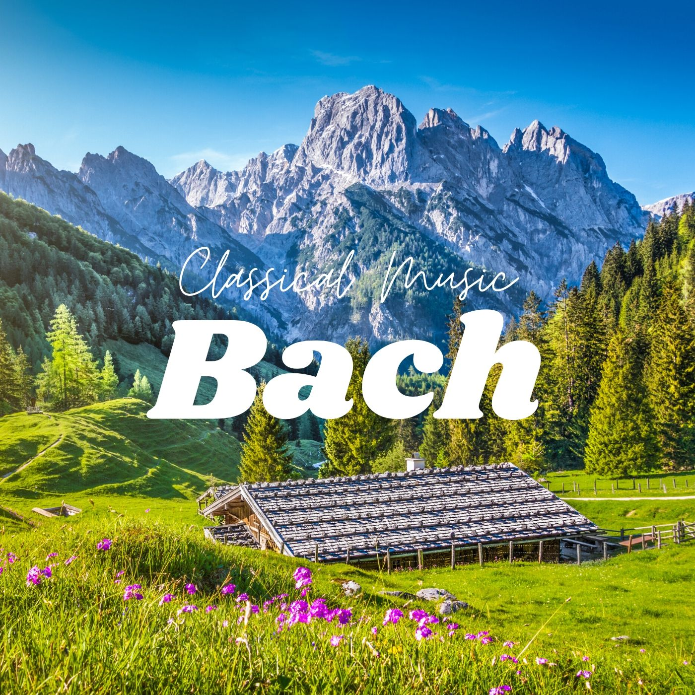 Bach - Relaxing Classical Music