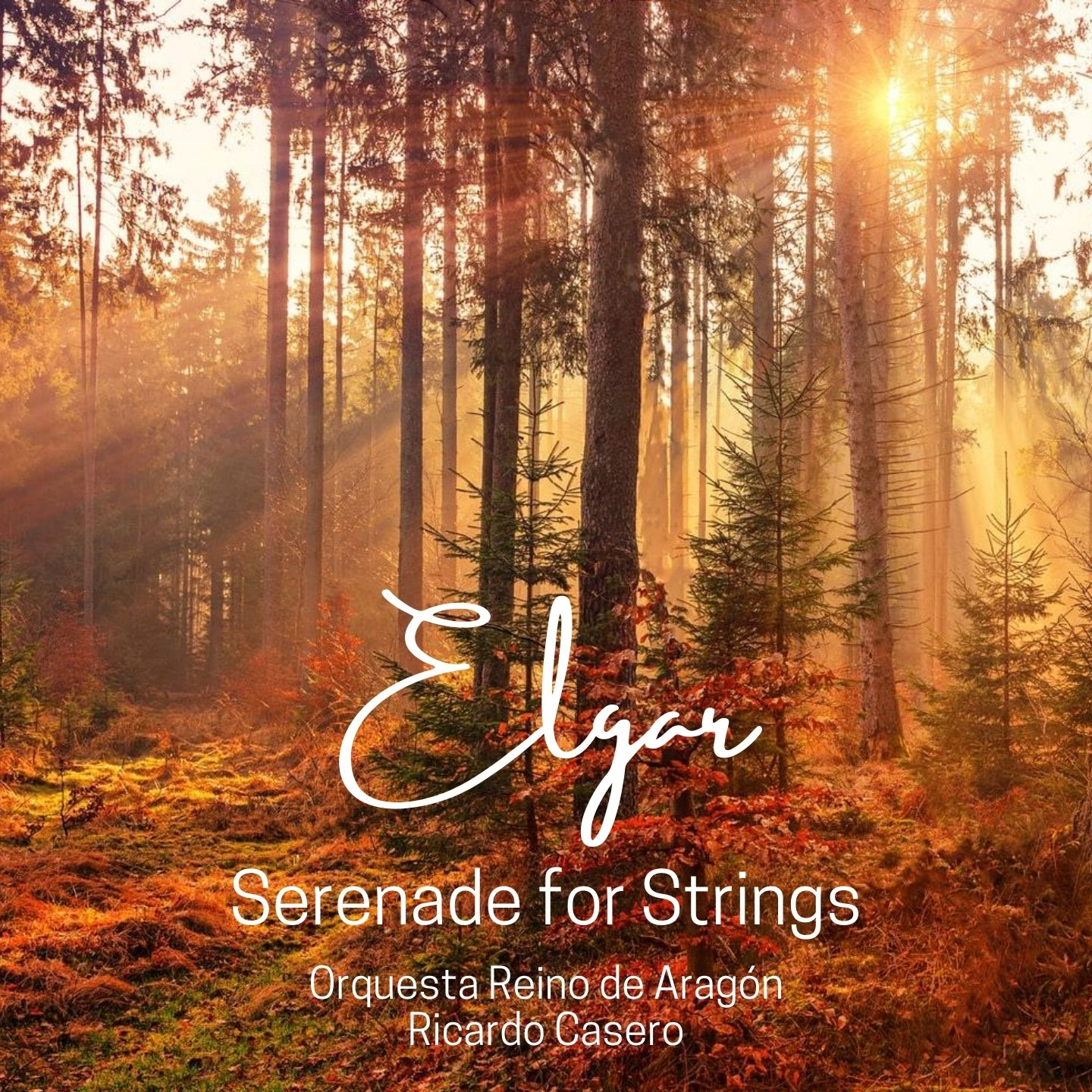 Elgar: Serenade for Strings