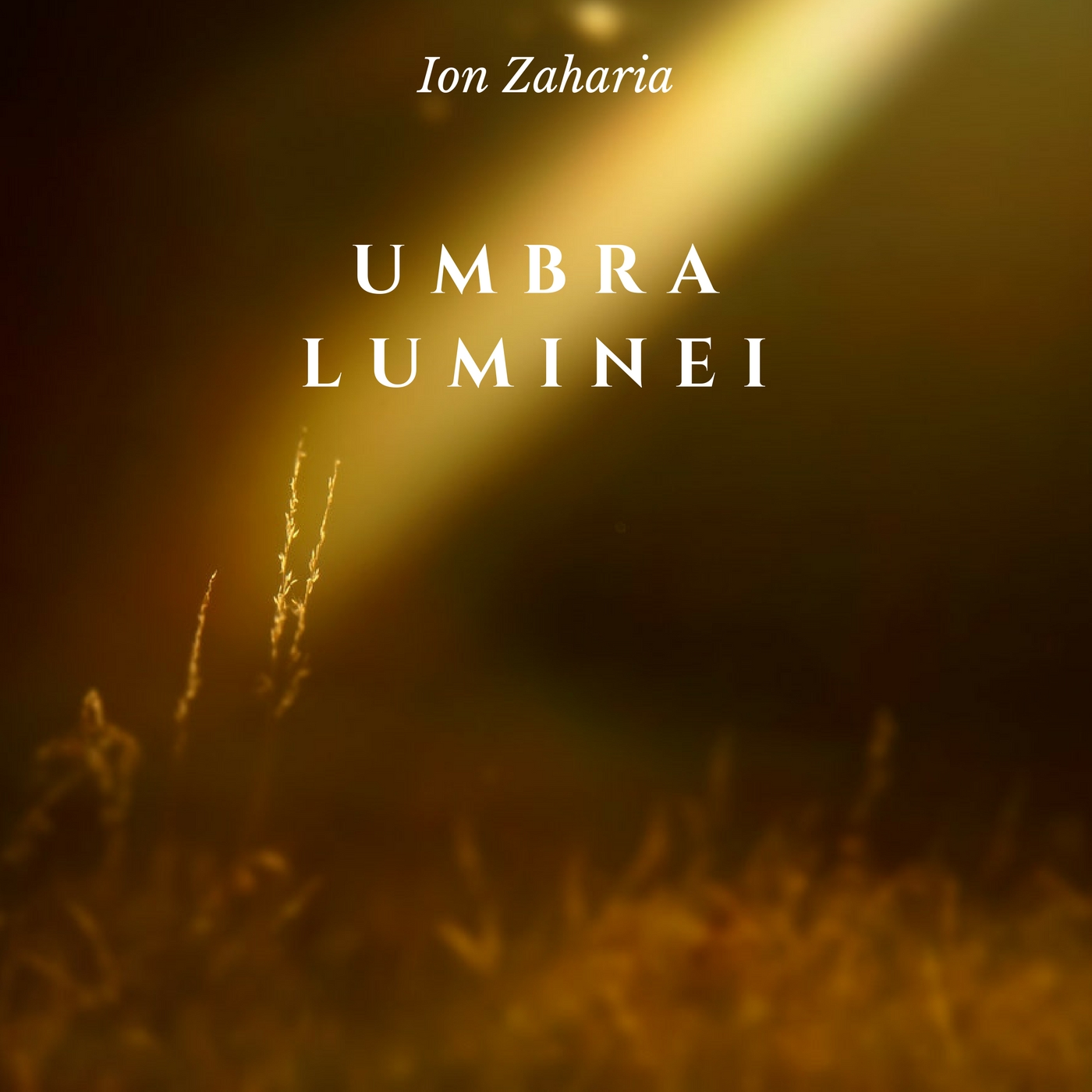 Umbra Luminei