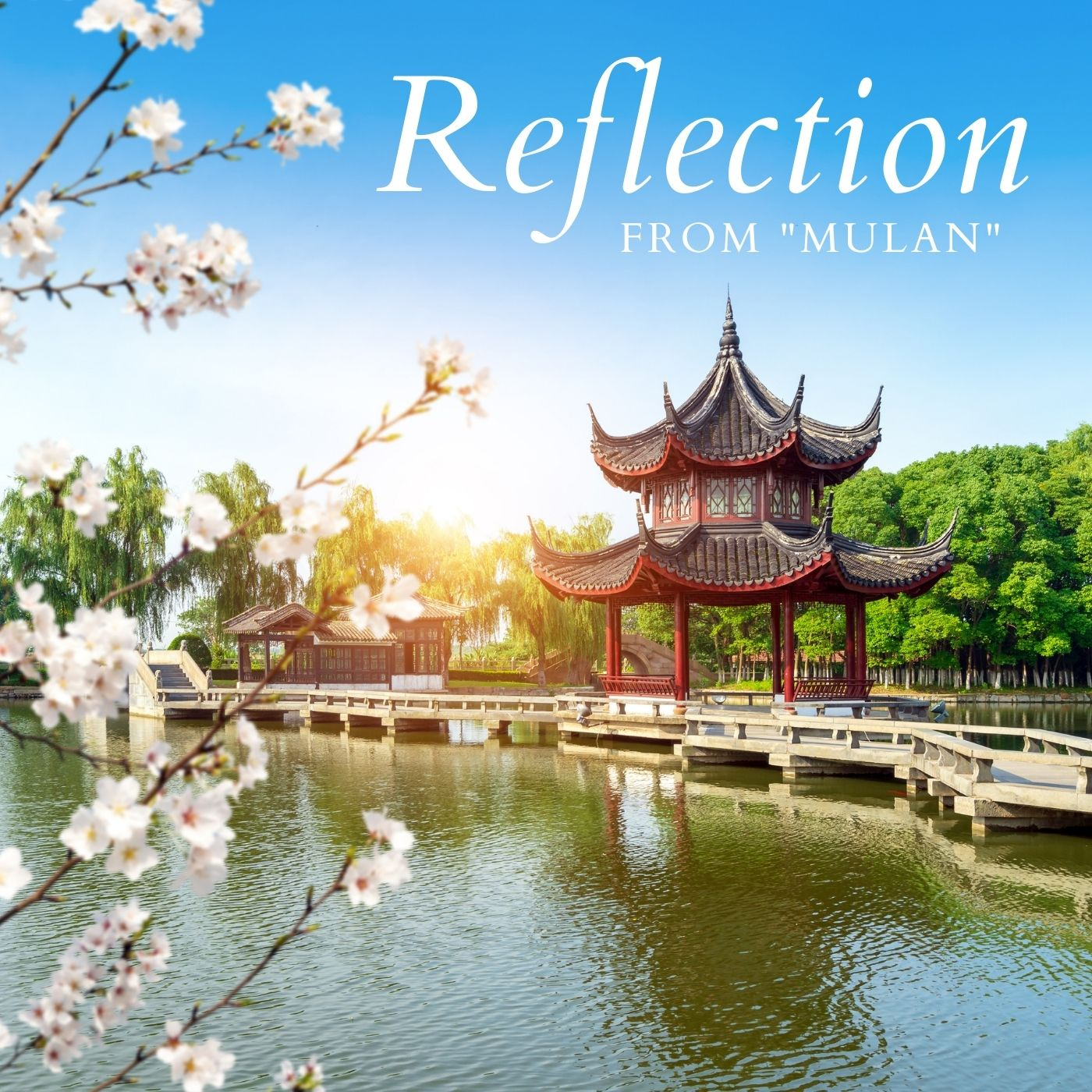 Reflection (from