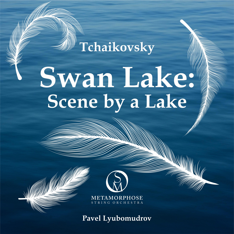 Tchaikovsky - Swan Lake: Scene by a Lake