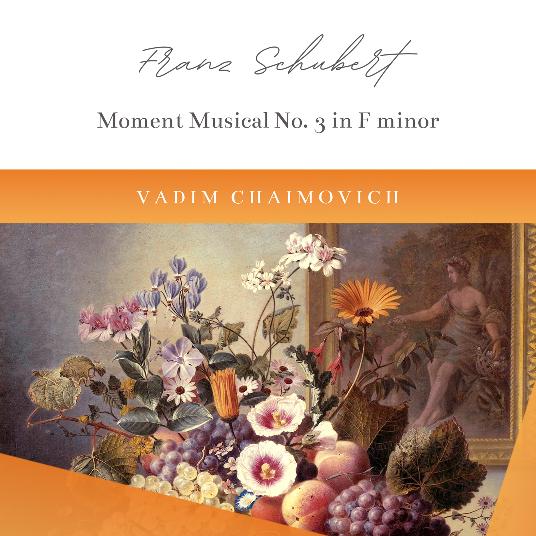 6 Moments Musicaux, Op. 94, D. 780: No. 3 in F Minor. Allegro moderato