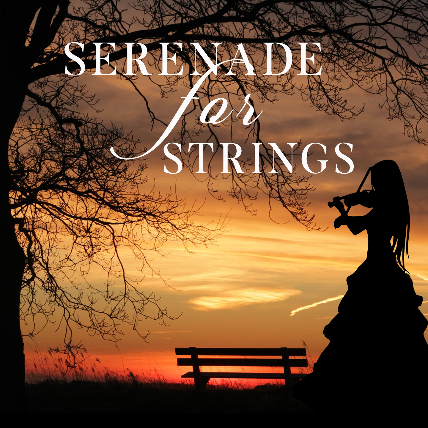 Serenades for Strings