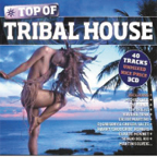 Top of TRIBAL HOUSE