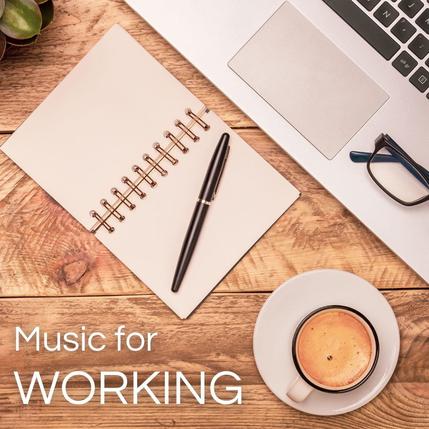Classical Music for Working & Concentration